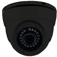 Камера Ginzzu (had-1035o) black 1.0mp Купольная